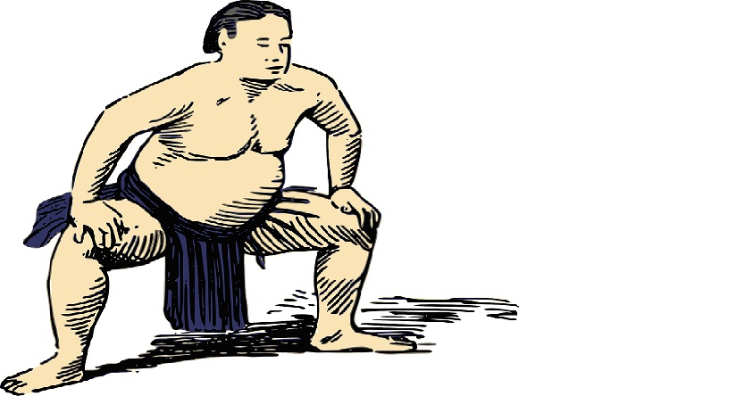 Top Ten Sumo Wrestlers in the World
