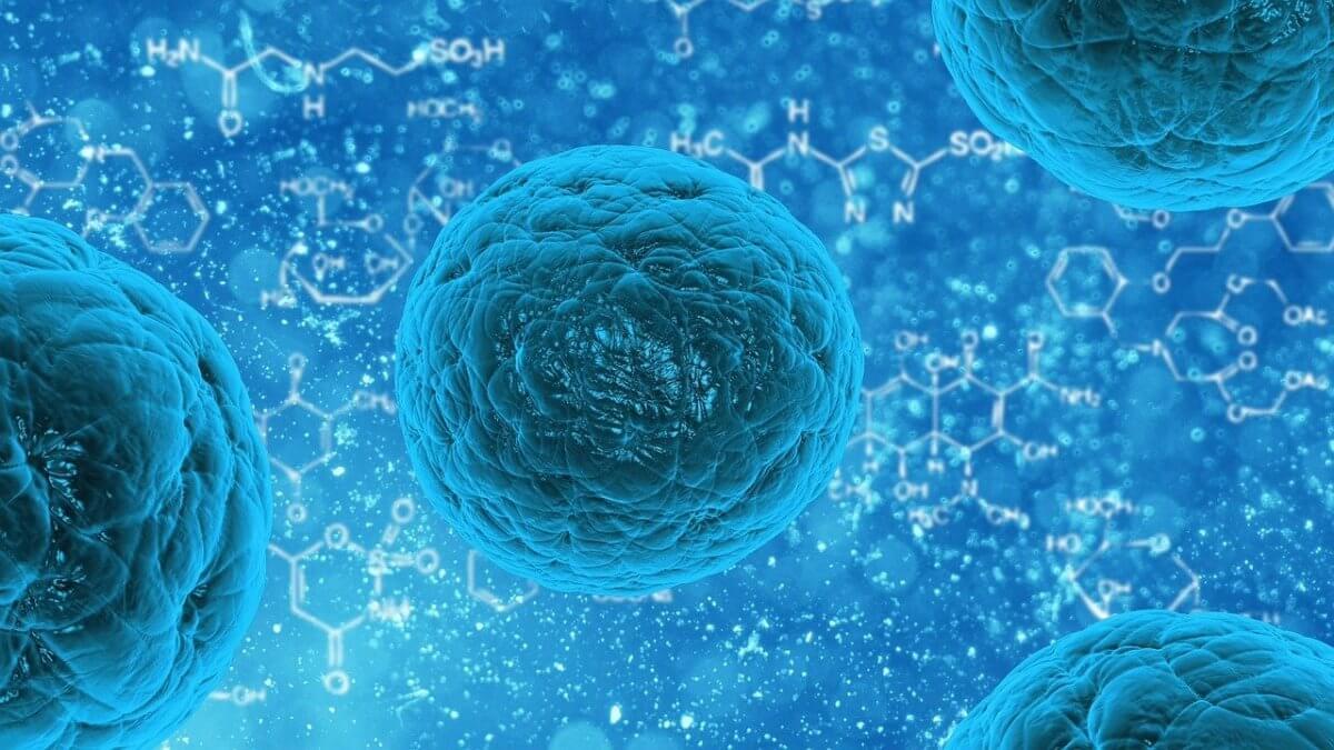 Mushrooming Coronavirus: How to Protect yourself